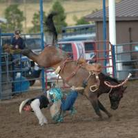 Rodeo in Bryce Canyon