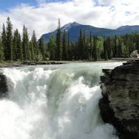Dag 20: Icefield Parkway. Athabasca Falls.