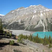 De Icefields Parkway  Lake Peyto