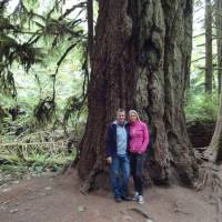 Cathedral Grove op Vancouver Island