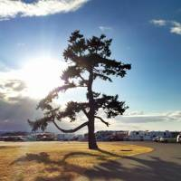 Camping in Parksville (Vancouver Island)
