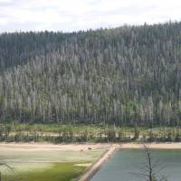 Navajo Lake, Dixie National Forest