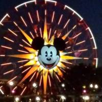 Mickey' s funwheel by night