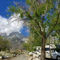 Lone pine campground.