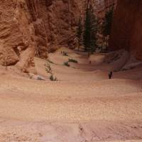 Afdaling in de Bryce Canyon