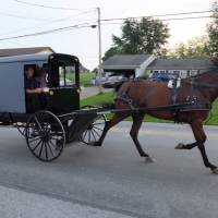 The Amish people