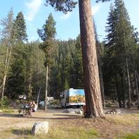 Watchman. Campground Sequoia
