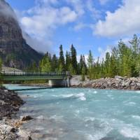 Cathadral Mountain - Kicking Horse River